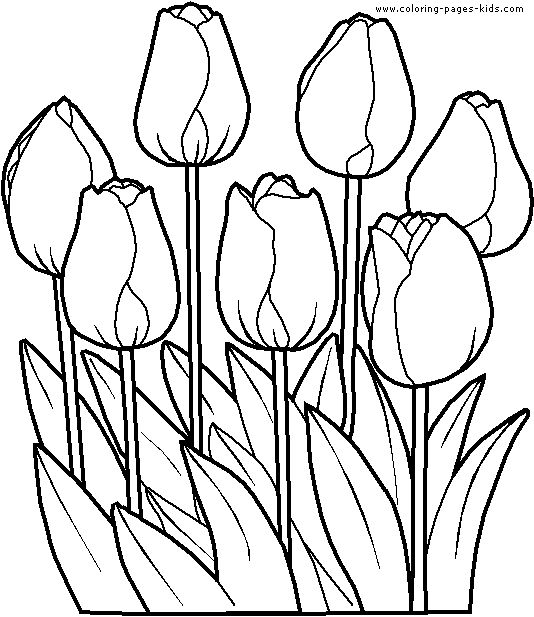 534x617 Coloring Pages Fabulous Flowers Coloring Page Flower Pages