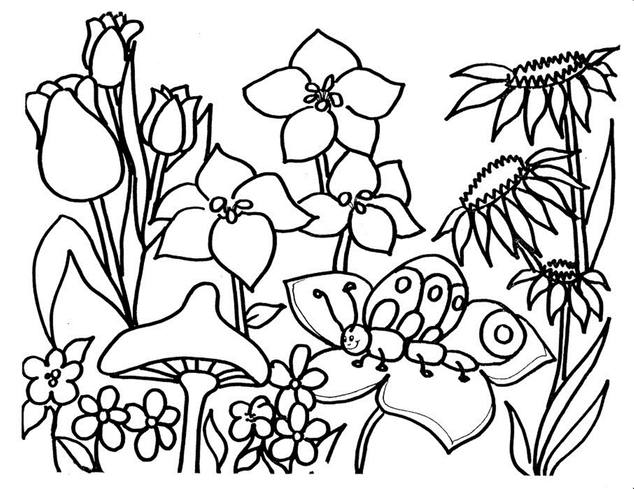 2039x1575 Free Printable Flower Coloring Pages For Kids