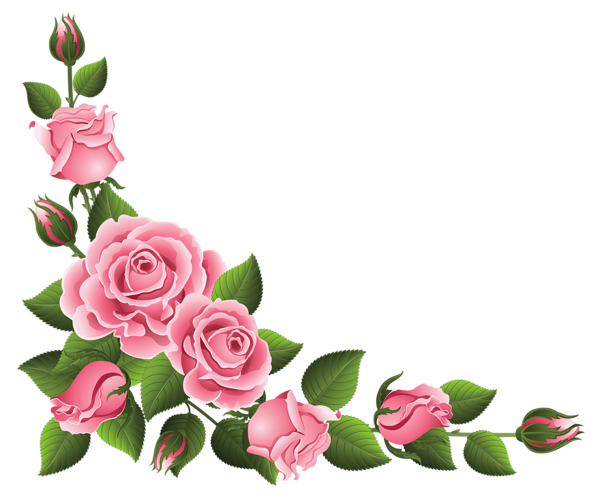 600x495 Pink Rose clipart flower corner
