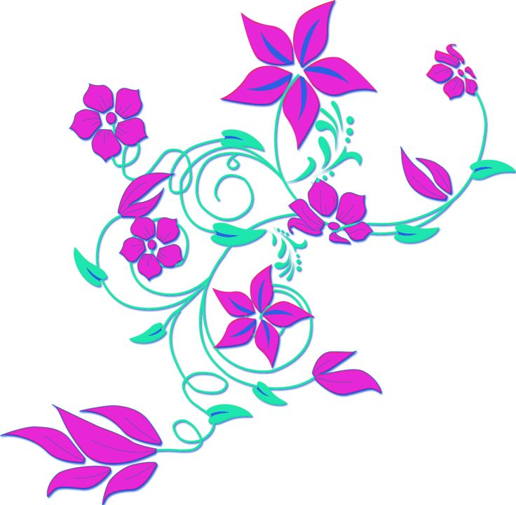 736x720 The Best Flower Border Clipart Ideas Clipart