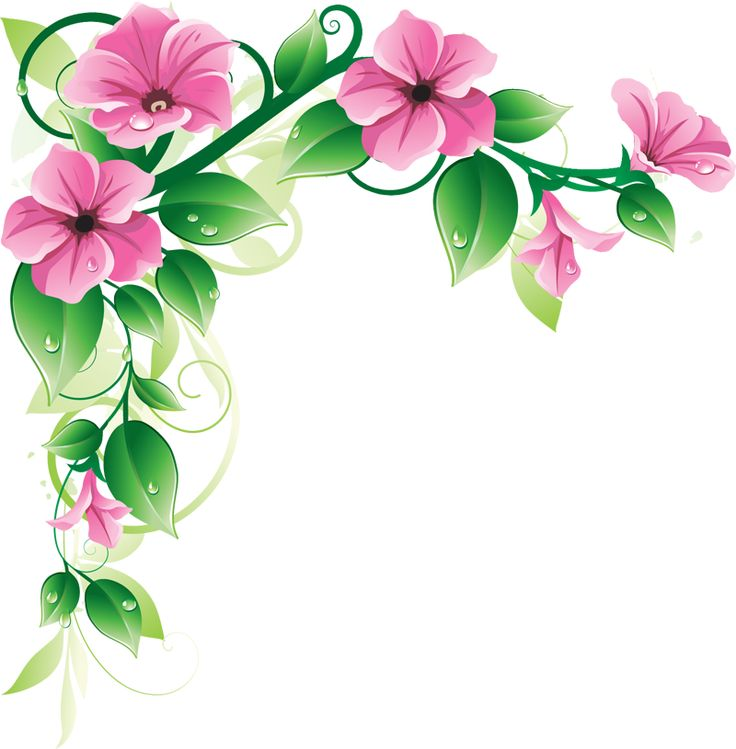 736x749 Graphics For Spring Floral Corners Graphics