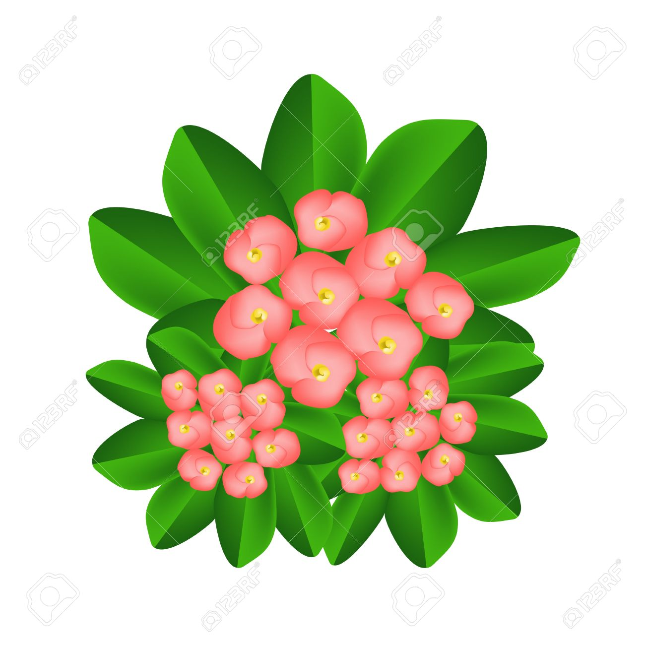 Flower crown clipart free download best flower crown clipart on 1300x1300 white flower clipart group flower izmirmasajfo