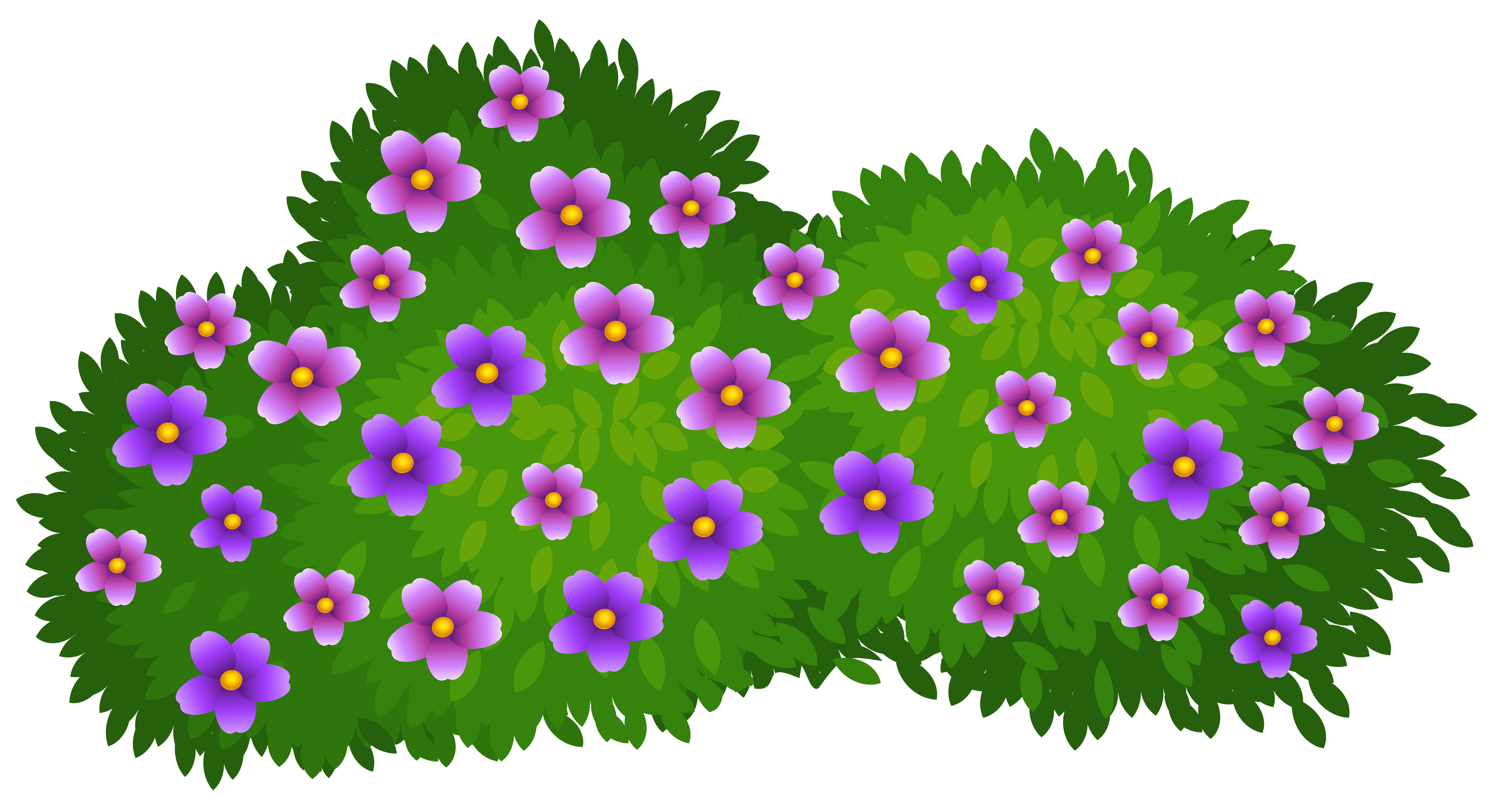 5000x2720 Garden Clipart Transparent