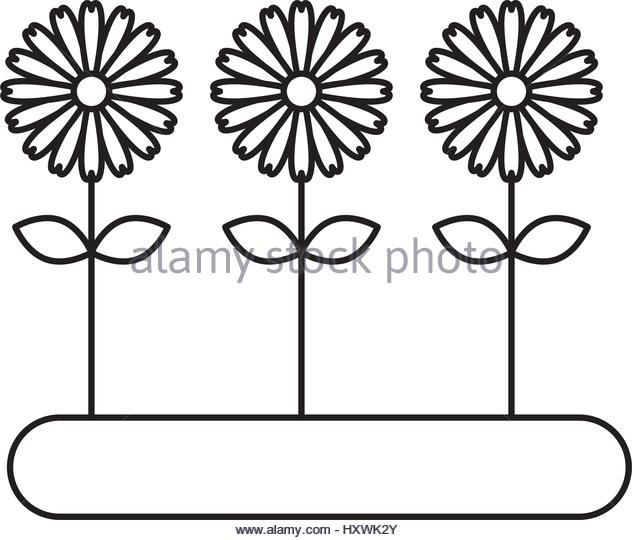 632x540 Cultivated Flower Garden Icon Vector Stock Photos Amp Cultivated