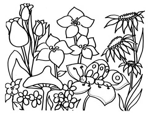 480x370 Flower Garden Clipart Black And White