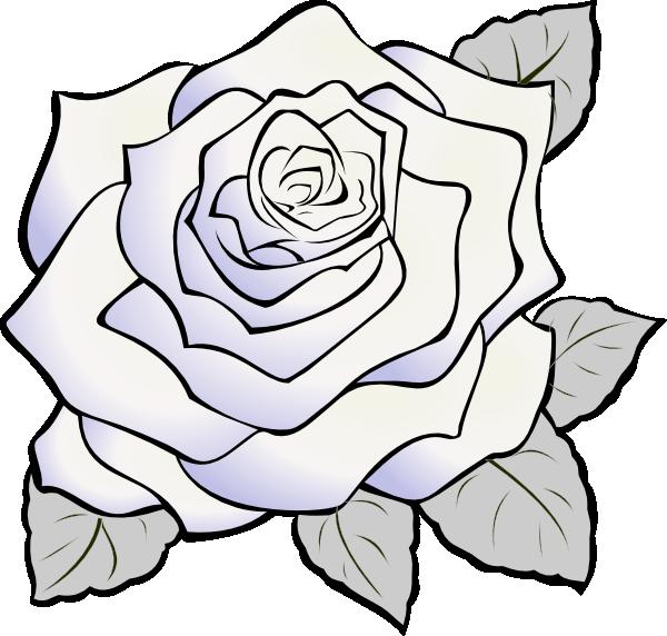 600x572 White Rose Gray Clip Art