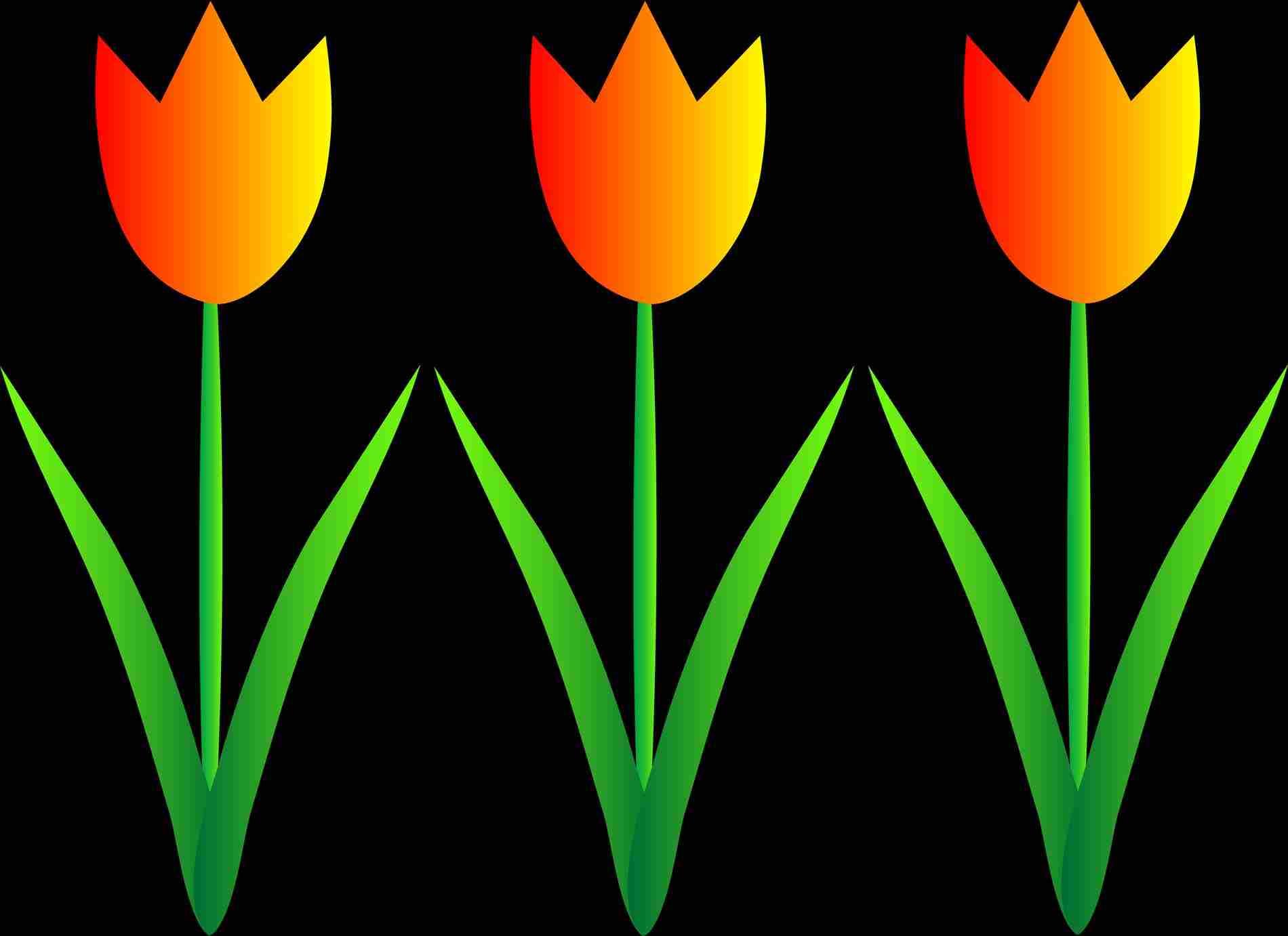 1900x1382 Flower Free Flower Garden Border Clip Art S Free Download Spring