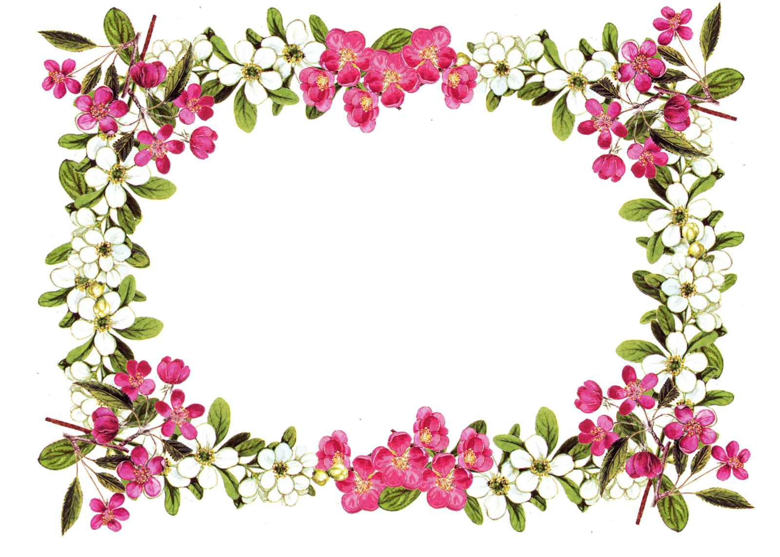 1600x1143 Garden Clipart Border Png Flower Cliparts Free Best