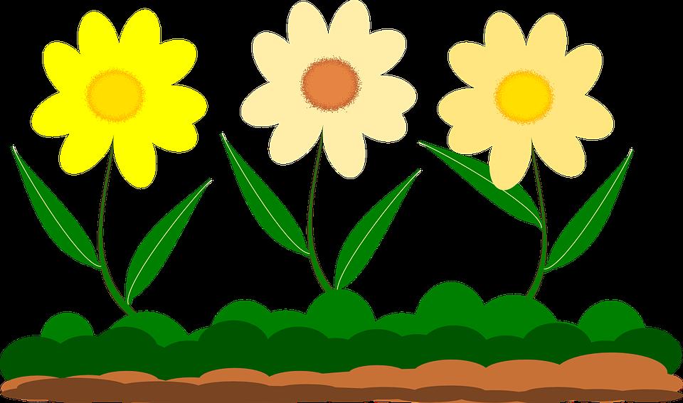 960x567 Yellow Flower Clipart Garden