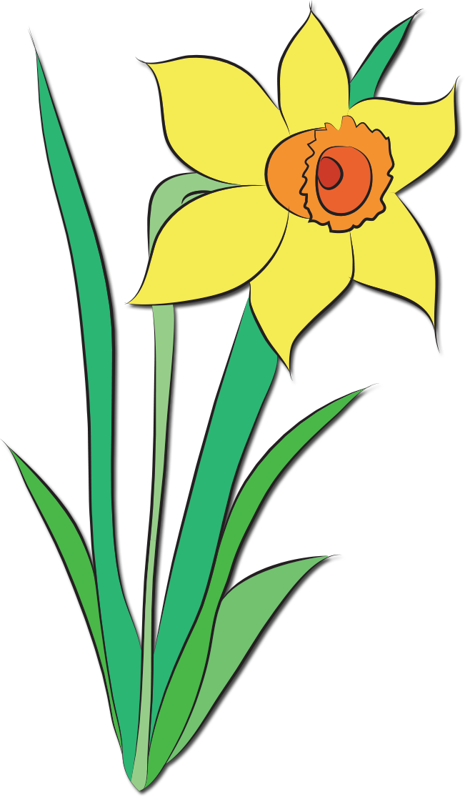 651x1115 Shower Clipart May Flower