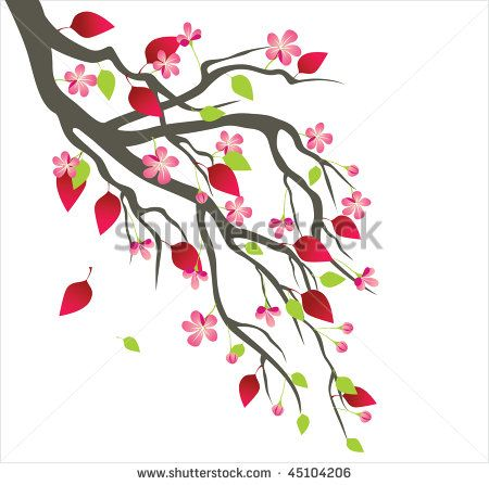 450x447 80 Best Cherry Blossom Vector Clipart Png. Images