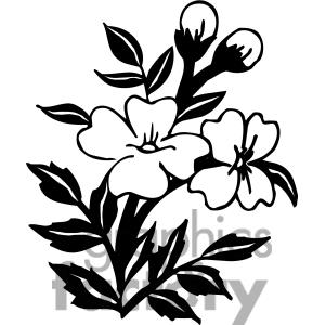 300x300 Clip Art Flower Black And White Clipart Panda