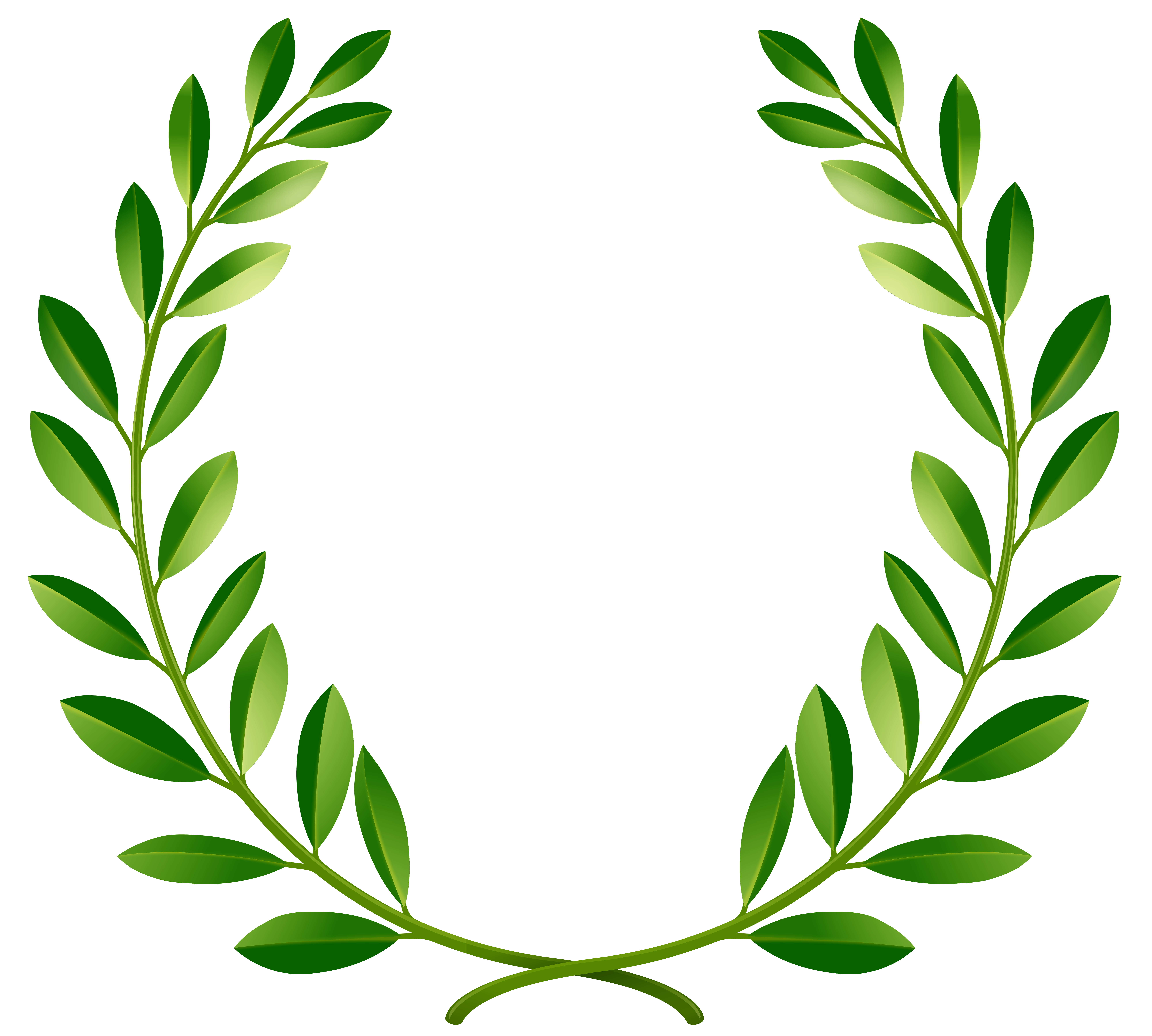 8000x7194 Green Laurel Leaves Png Clip Art Image Bampf Generally