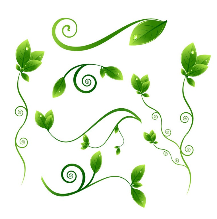 Flower Leaves Clipart | Free download on ClipArtMag