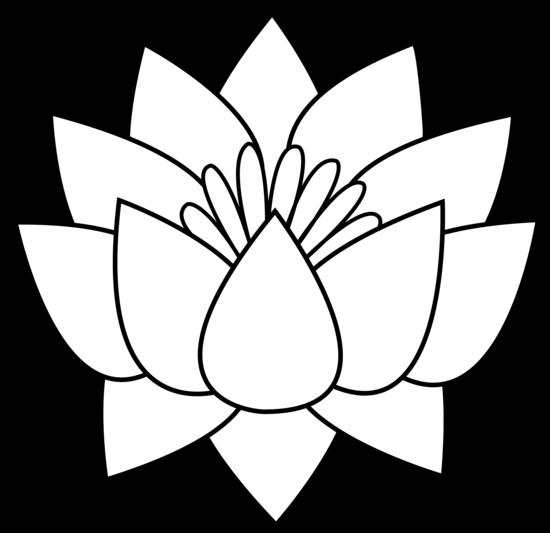 550x533 Lotus Flower Line Art