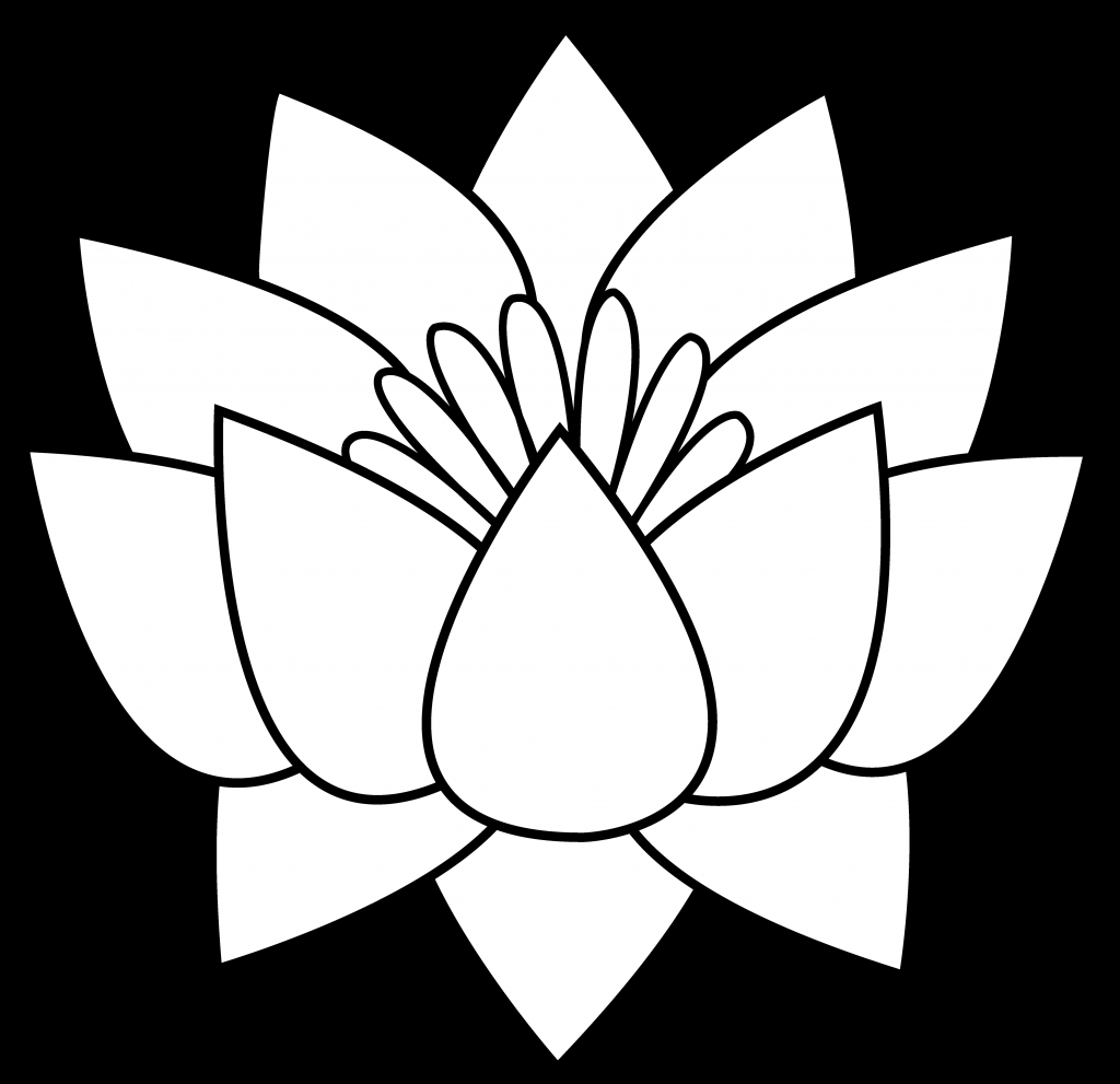 1024x991 Lotus Flower Line Drawing Lotus Flower Line Drawing Clipart Free
