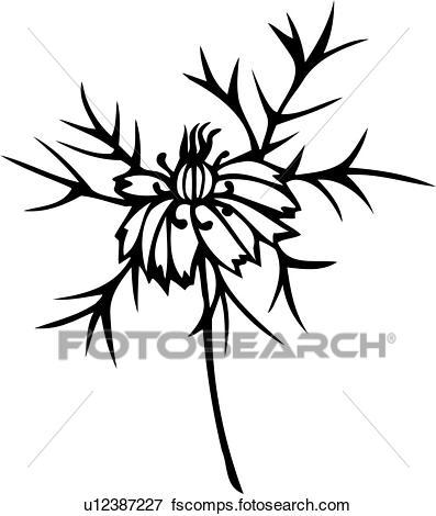 397x470 Clip Art Of , Flower, Love In A Mist, Varieties, U12387227