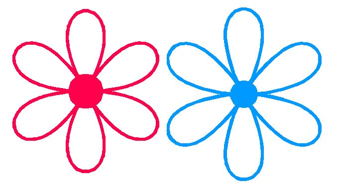 683x378 Flower Petal Outline Clipart