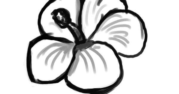 600x315 Flower Drawing Clipart
