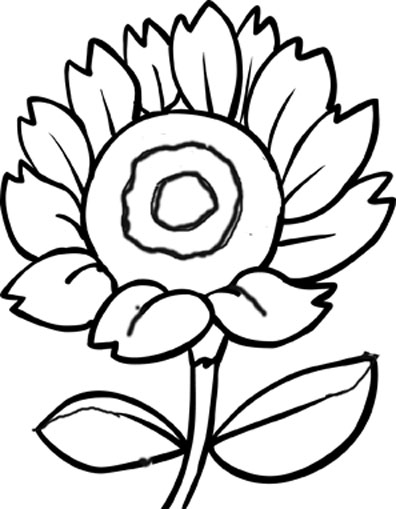 396x509 Outlines Of Flowers For Colouring