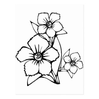 324x324 Black Flower Outlines Postcards Zazzle