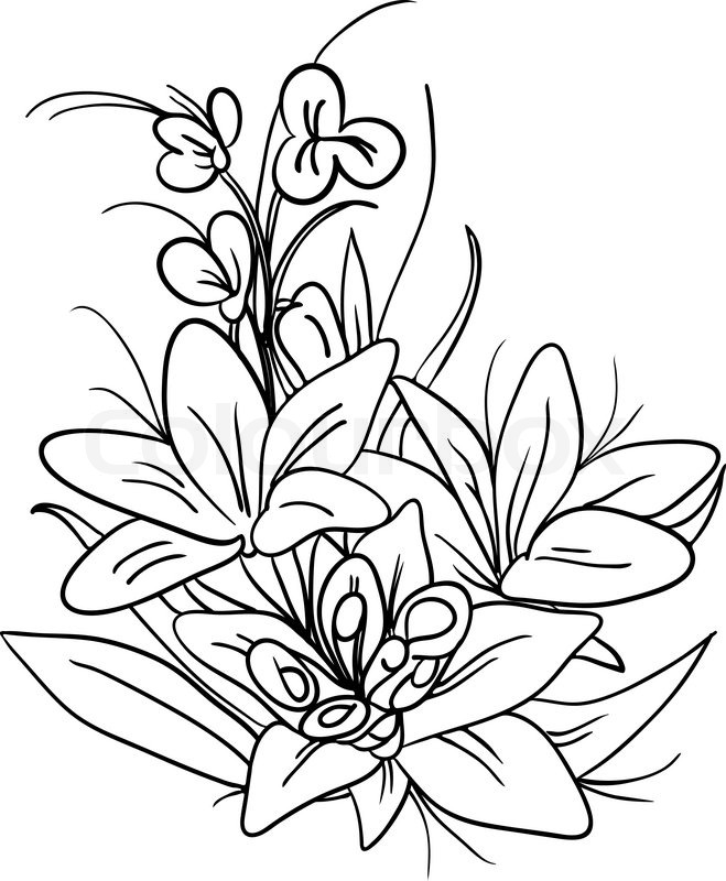 659x800 Bouquet Of Lily Flowers Stock Vector Colourbox