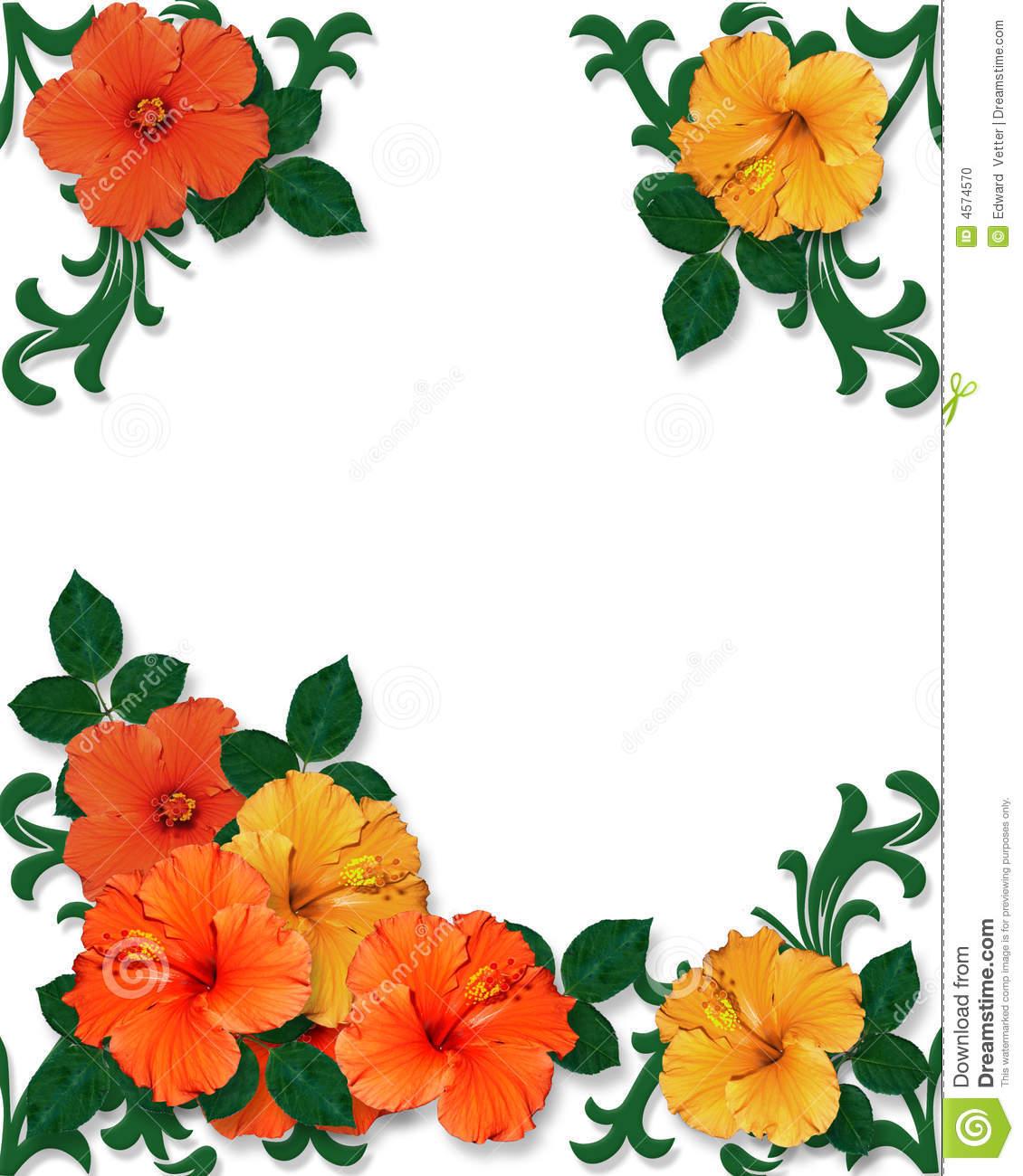 1130x1300 Hawaiian Flower Border Clipart