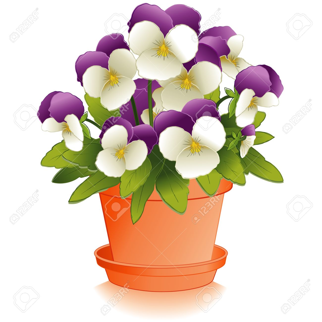 1300x1300 Johnny Jump Up Flowers (Pansies) In Clay Flowerpot Royalty Free