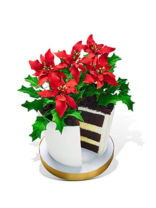 522x696 Oprah's Poinsettia Flower Pot Cake Made In Heaven Cakes Of Park