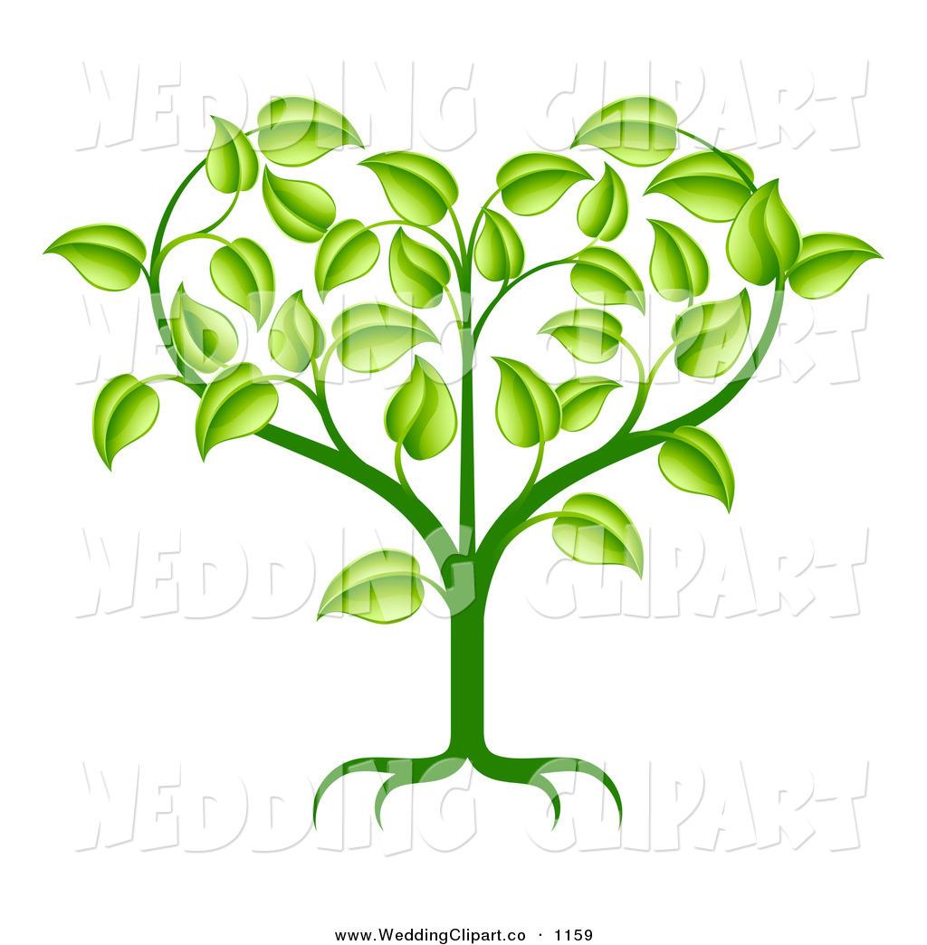 1024x1044 Plant Roots Clipart