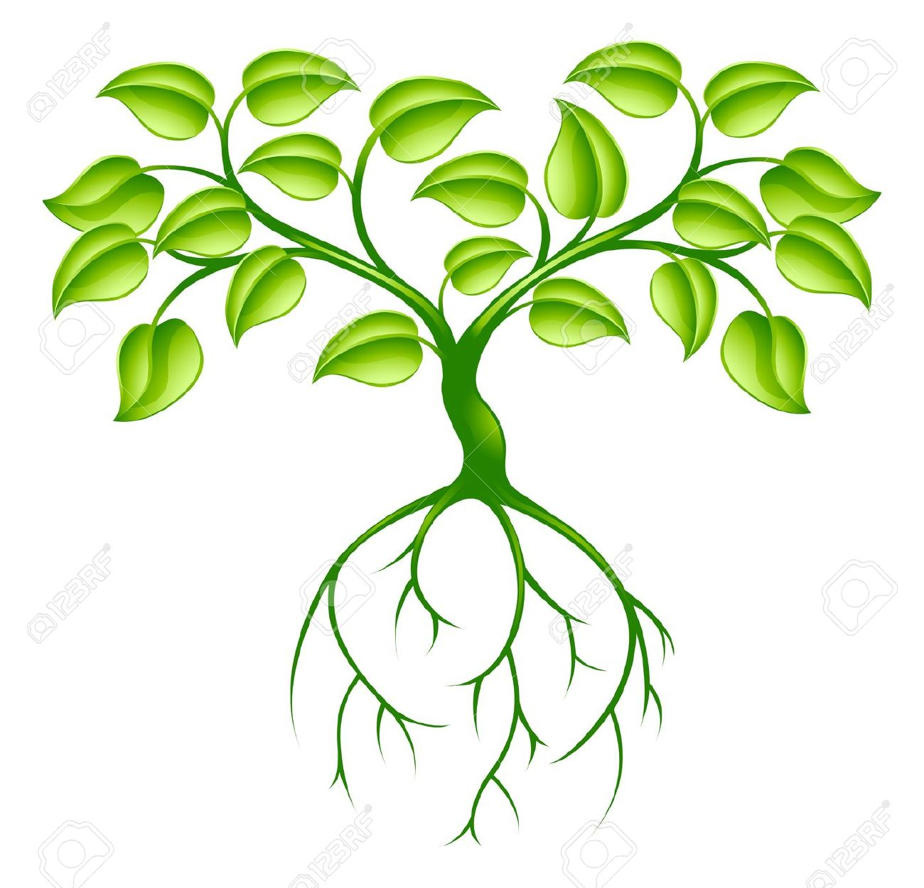 1300x1250 Roots Clipart Animated