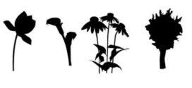 272x125 Flower Silhouette Vector Free Download Clip Art Free Clip Art
