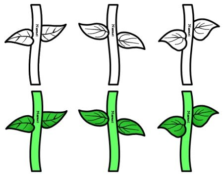 Flower Stem Clipart