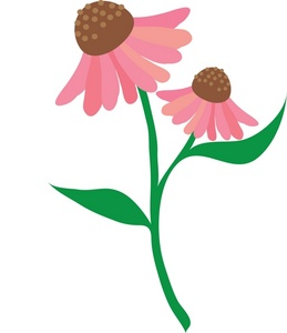 259x300 Flowers Clipart Image