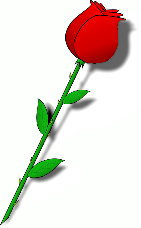 485x785 Rose Stem Clipart