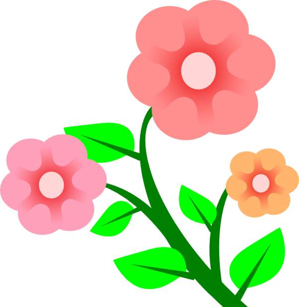 600x618 Tree Clipart Floral