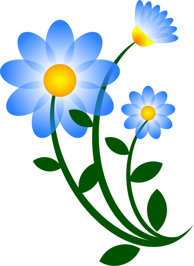 655x900 Flower Vector