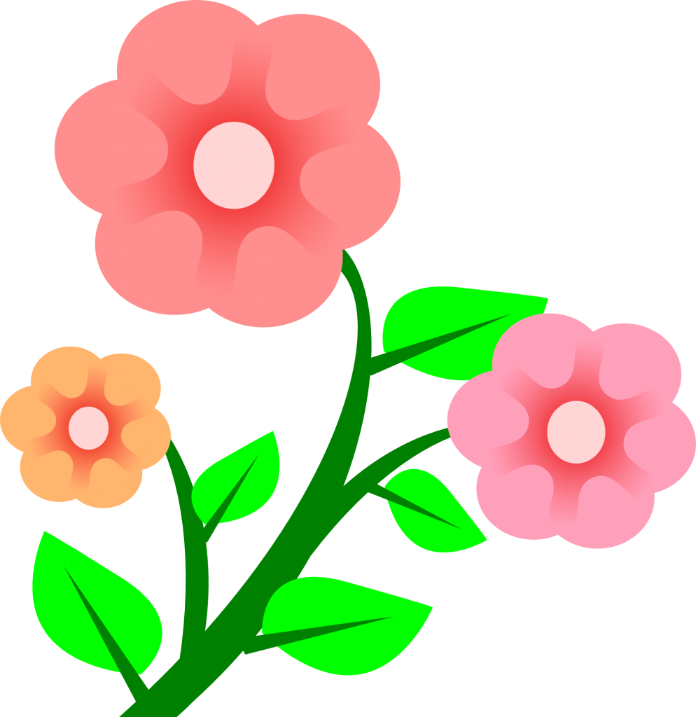 994x1024 Flower Vector 14 An Images Hub