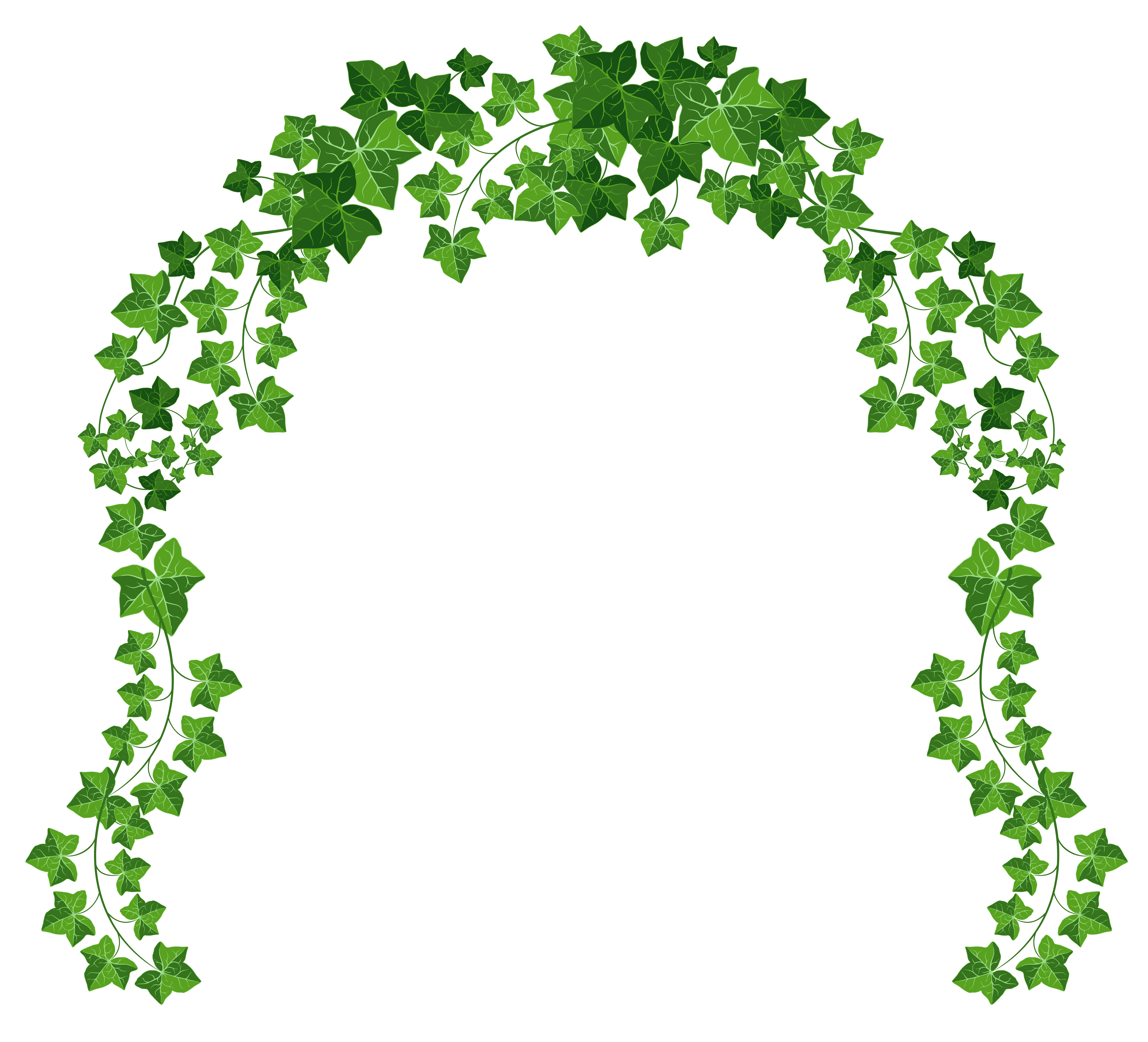 5203x4724 Arch Clipart Flower Arch