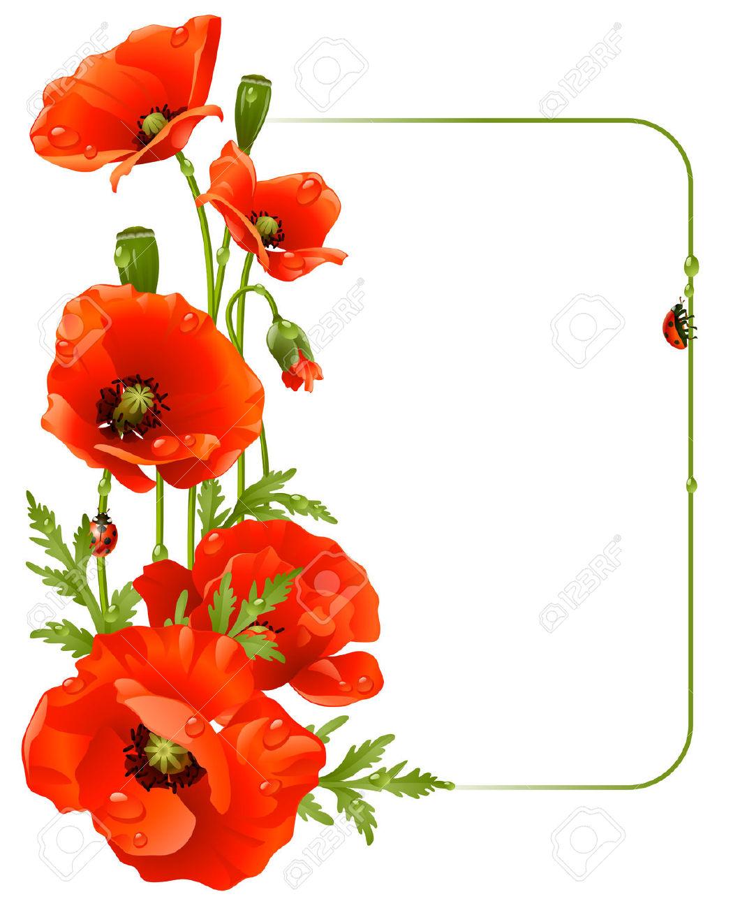 1050x1300 Red Flower Clipart Border