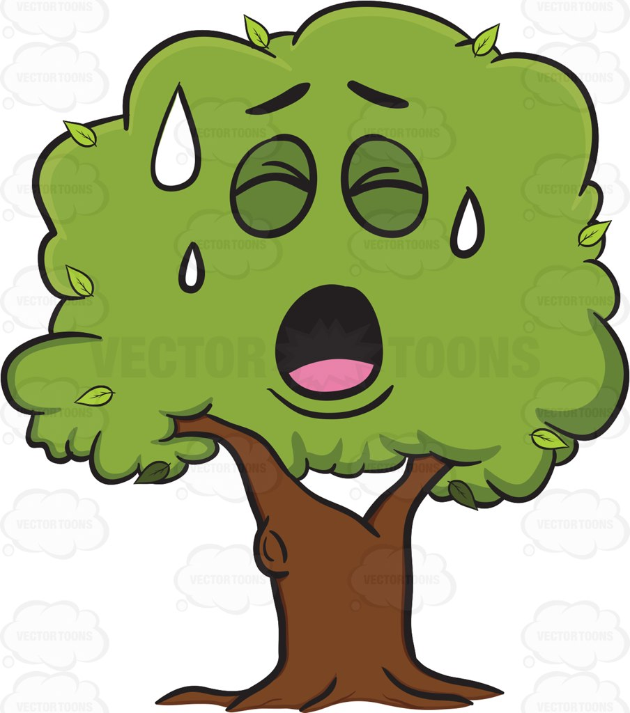 904x1024 Tree With A Face Clipart