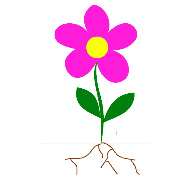660x660 Roots Clipart Flower Bud