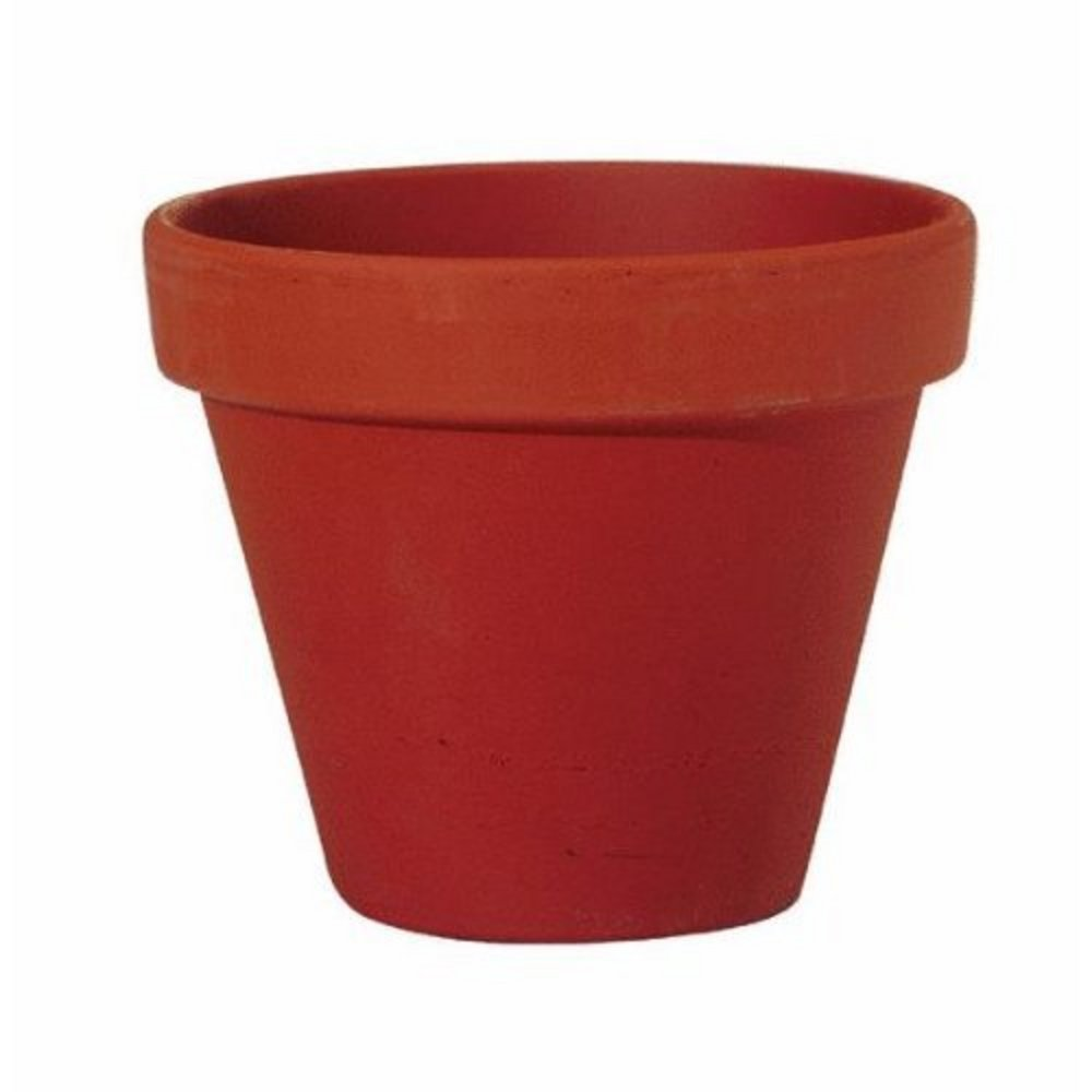 1000x1000 Pot Plant Clipart Red Flower