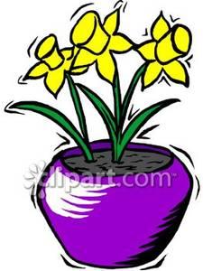 225x300 Top 91 Daffodil Flower Clip Art