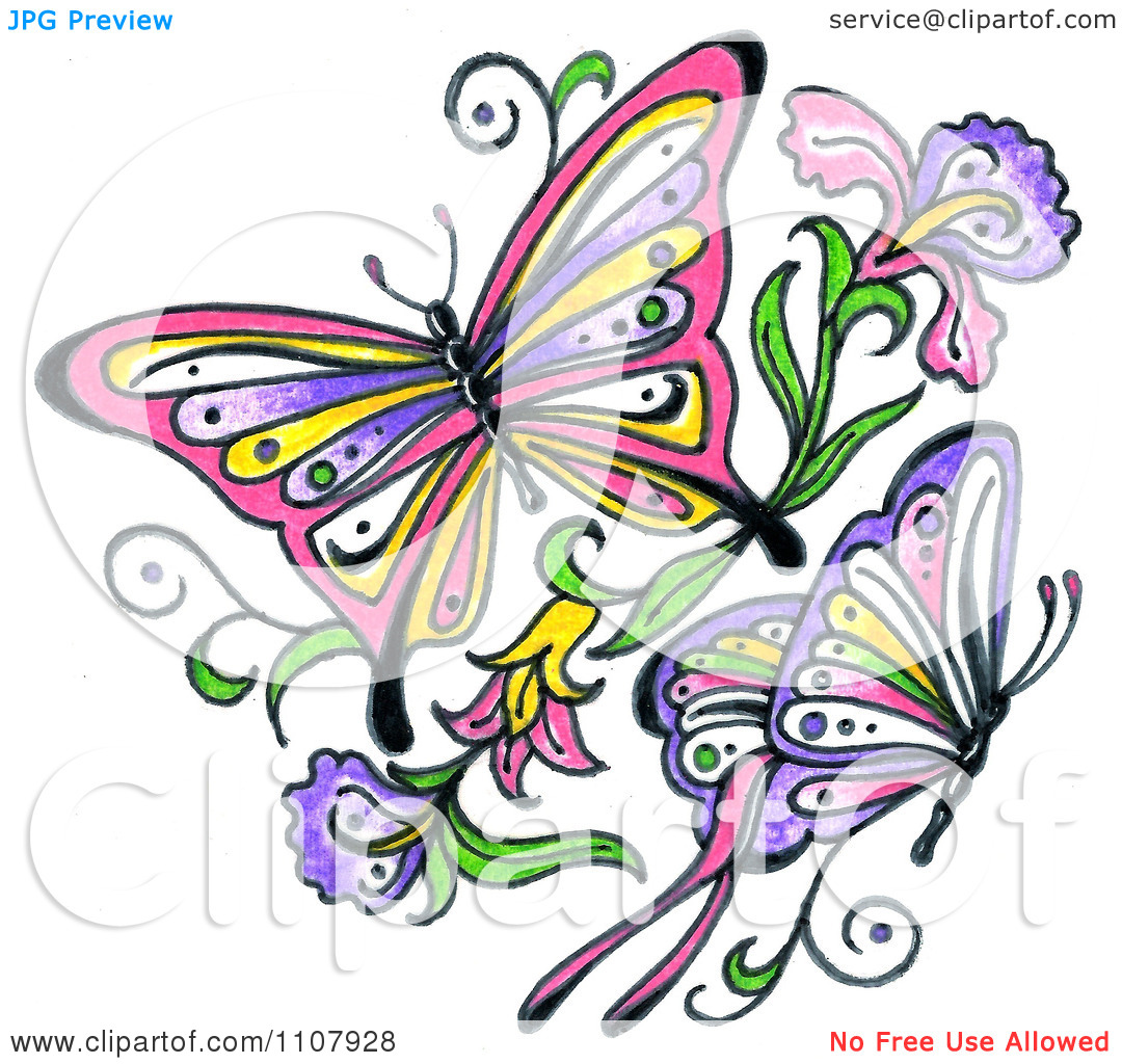 1080x1024 Colors Clipart Flower Butterfly