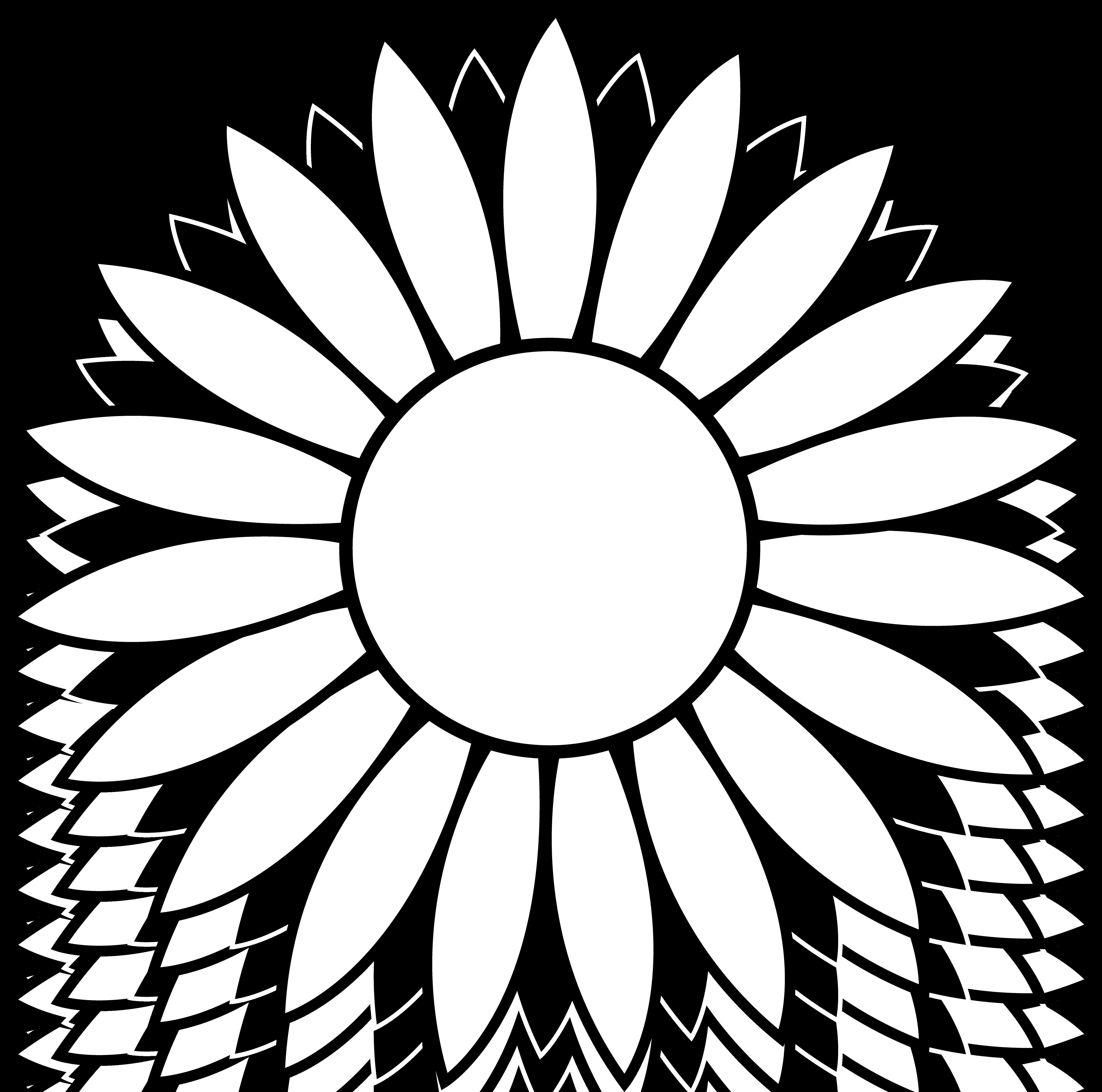 5137x5092 Black And White Flower Design