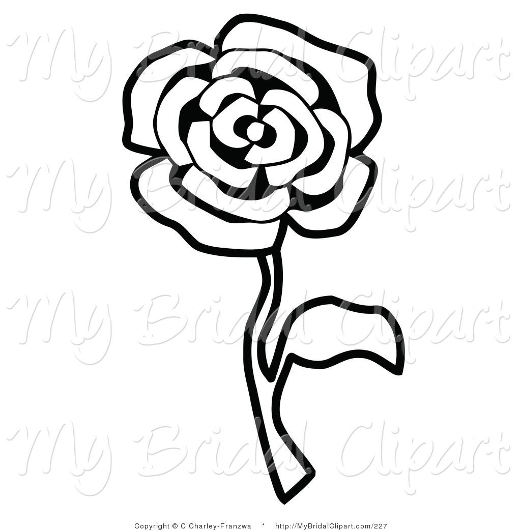 1024x1044 White Rose Border Clipart