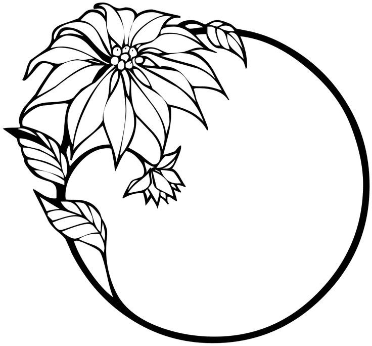 736x684 Poinsettia Clipart Black And White