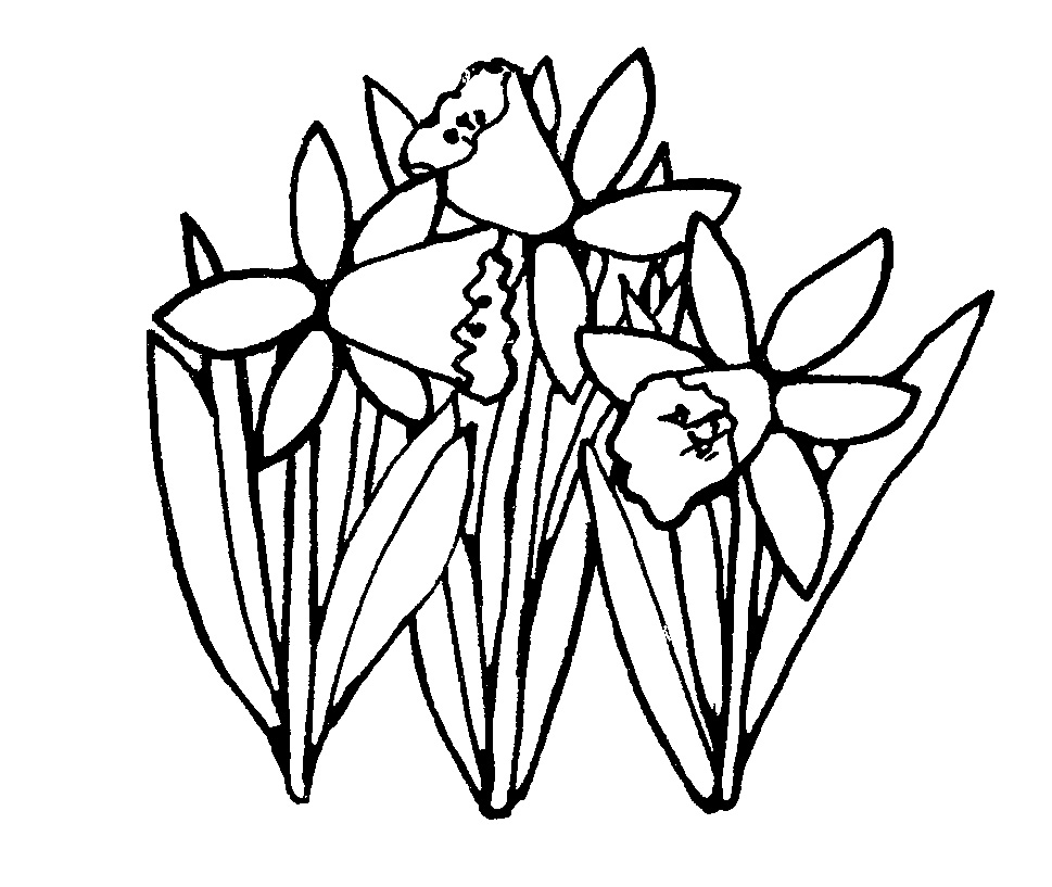 969x817 Spring Outline Cliparts