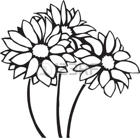 450x446 Chrysanthemum Clipart Black And White